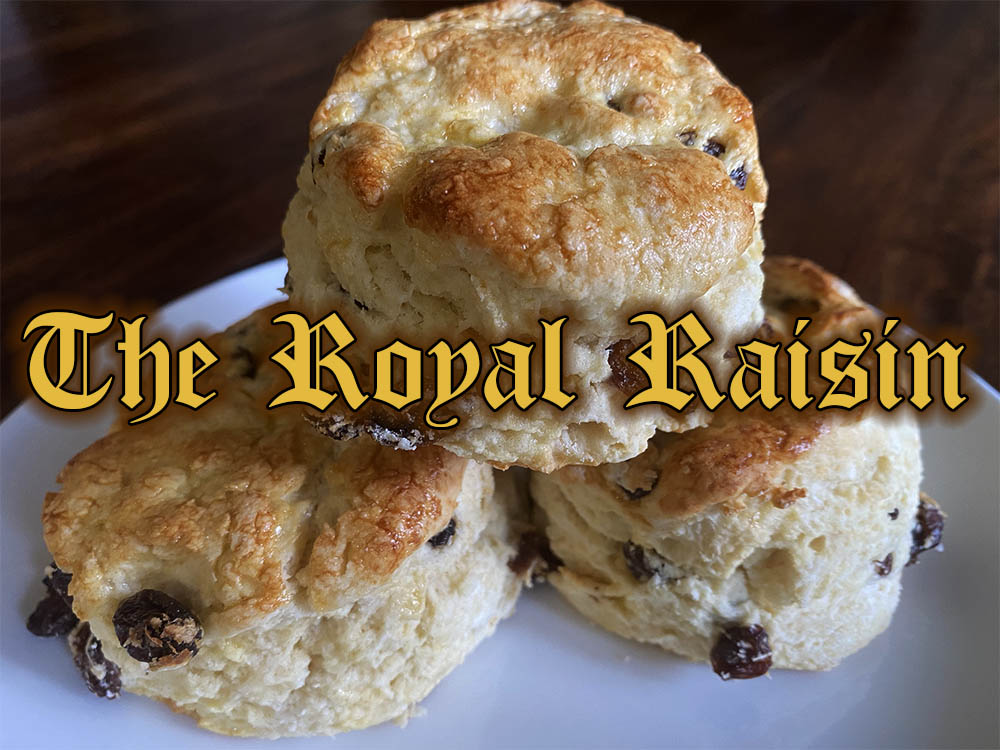 the royal traditional scone with raisins