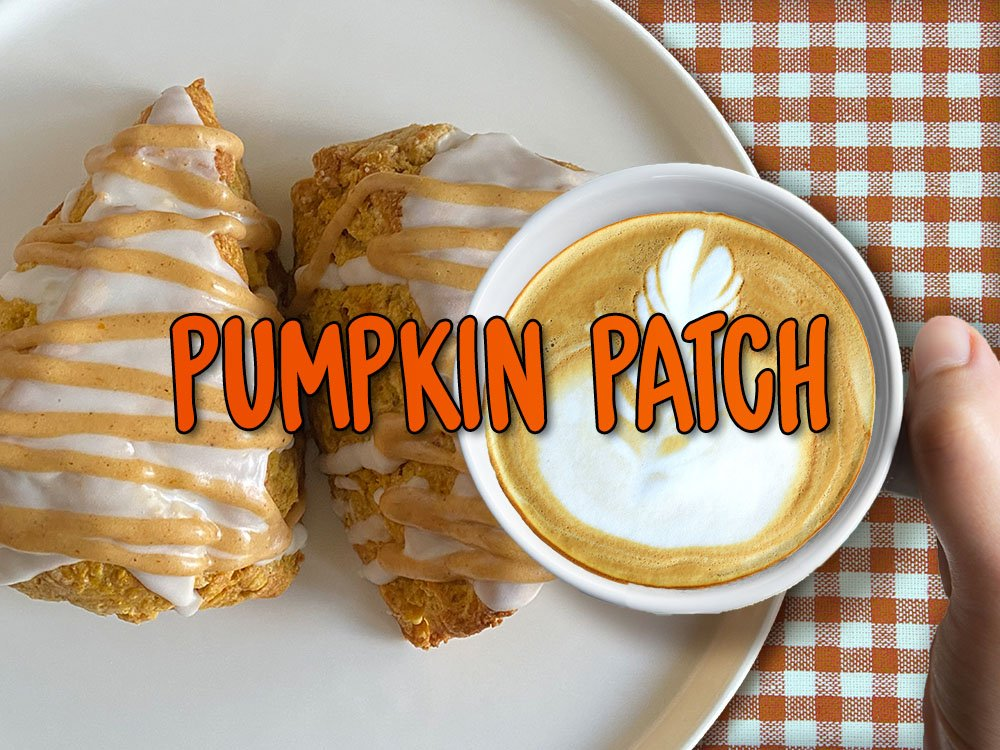 pumpkin patch scone with latte
