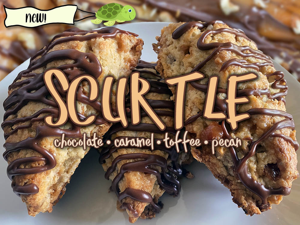 scurtle scone new
